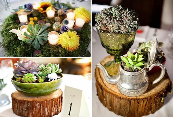 centrotavola non  floreali: piante succulente