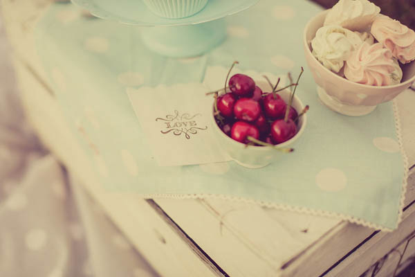 picnic anni 50 - giuseppe voci - pinkfrilly-08