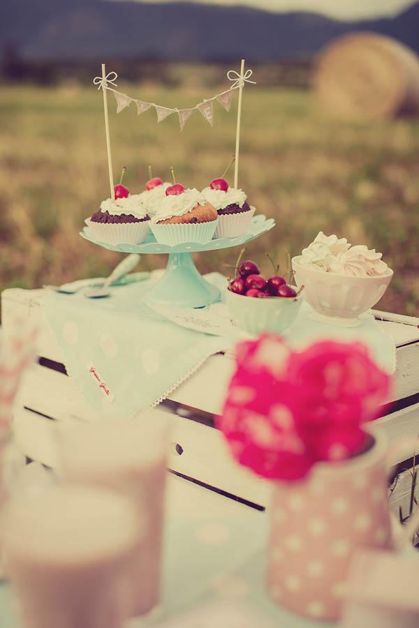 picnic anni 50 - giuseppe voci - pinkfrilly-09