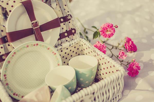 picnic anni 50 - giuseppe voci - pinkfrilly-13