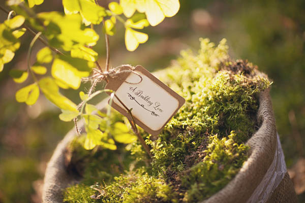 styled shoot green-05