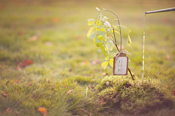 styled shoot green-16