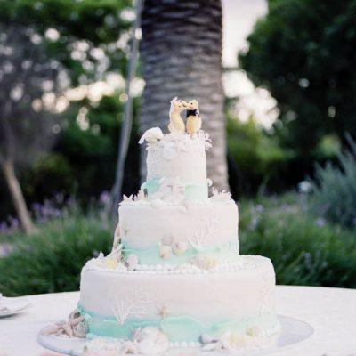 Un matrimonio semplice e delicato: Alessandra e Marco