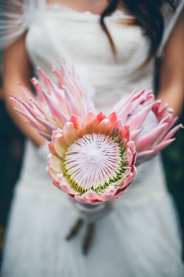 bouquet con protee