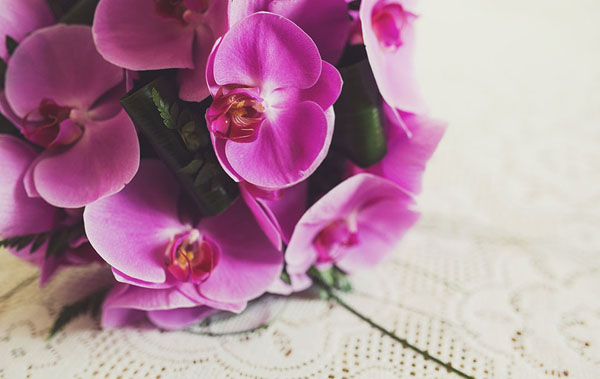 bouquet con orchidee phalaenopsis rosa