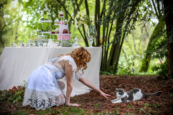 Matrimonio Tema Alice In Wonderland : 1000 images about alice and wonderland photography on pinterest