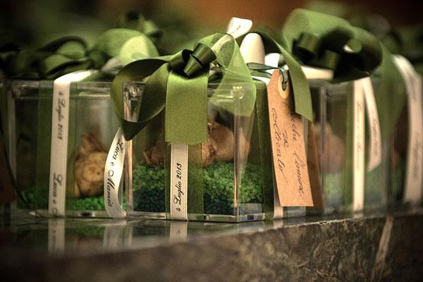 matrimonio verde tema viaggio belgirate -16
