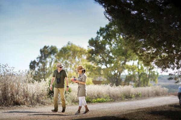 engagement session safari | nino lombardo fotografo-07