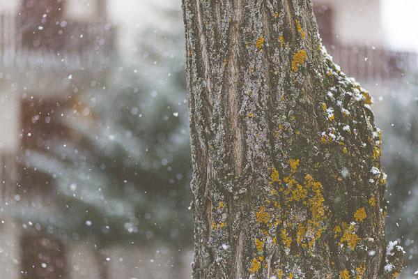 engagement session sulla neve | andrea calvano-10