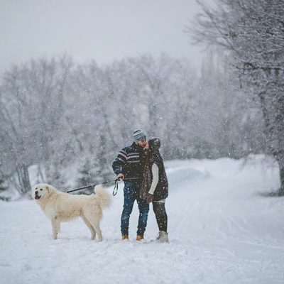 Un'engagement session nella neve