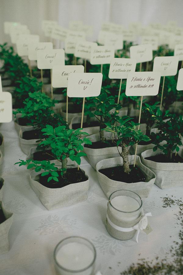 bonsai bomboniere