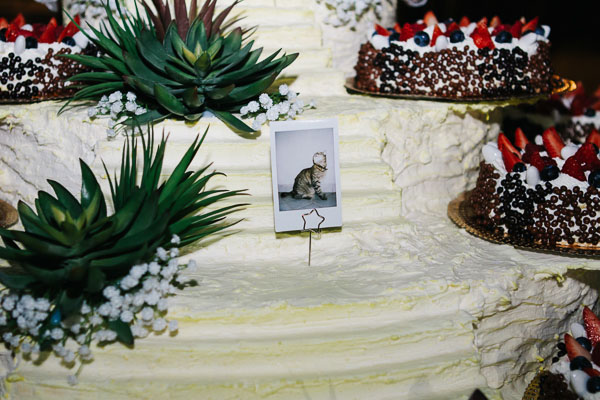 matrimonio country a tema erbe aromatiche | igloo photo-33