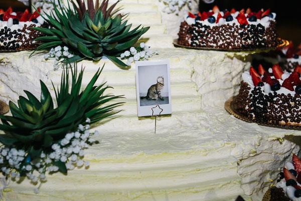 matrimonio country a tema erbe aromatiche | igloo photo-33