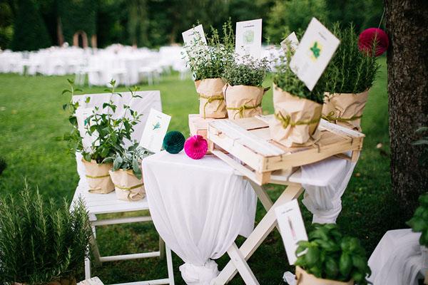 tableau de mariage con erbe aromatiche