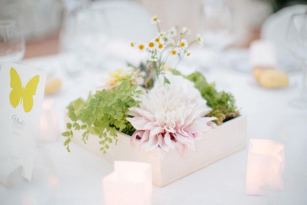 matrimonio a tema farfalle | studio magenta | wedding wonderland-22