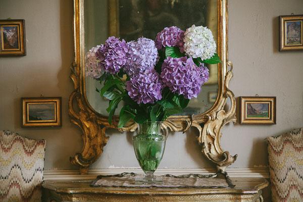 ortensie viola e lilla