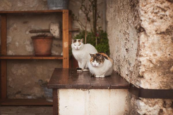matrimonio in abruzzo | foto terry-16