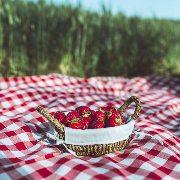 love session picnic anni 50-02