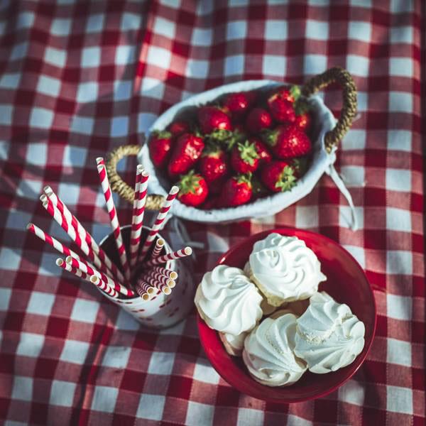 love session picnic anni 50-04