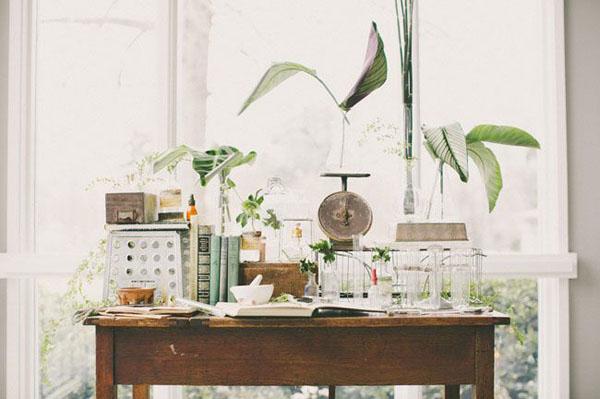 matrimonio botanico scientifico