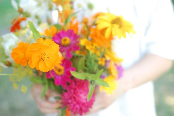 calendula fiori matrimonio autunno