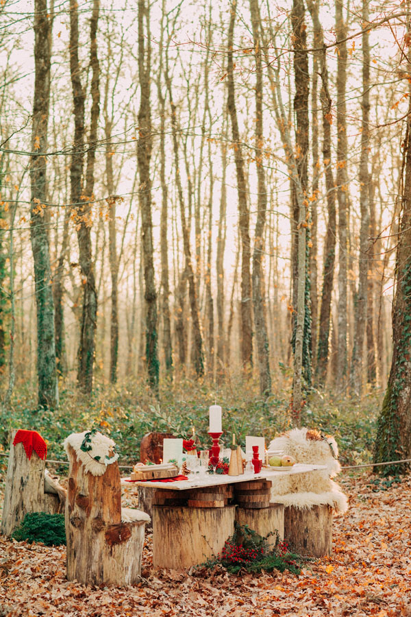 Decorazioni Matrimonio Natalizio : Inspiration un matrimonio natalizio nel bosco wedding