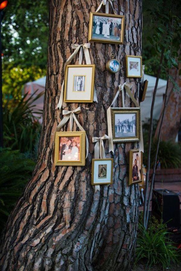 foto incorniciate appese a un albero