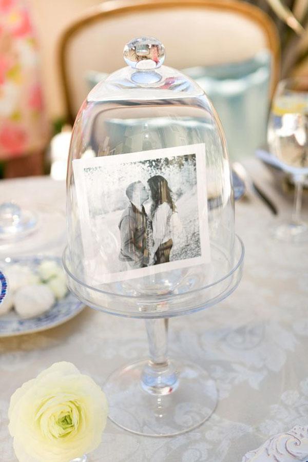 foto sotto una campana di vetro