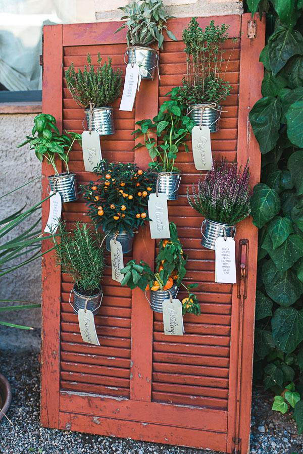 tableau de mariage bucolico con piante in vaso