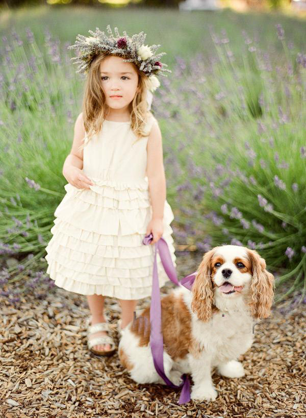 damigella con cane - animali ai matrimoni