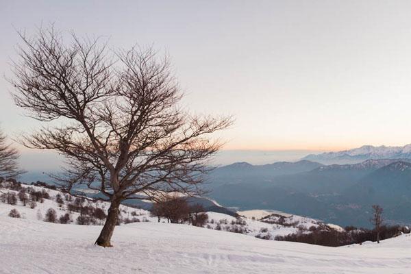 engagement session nella neve | marta guenzi 15