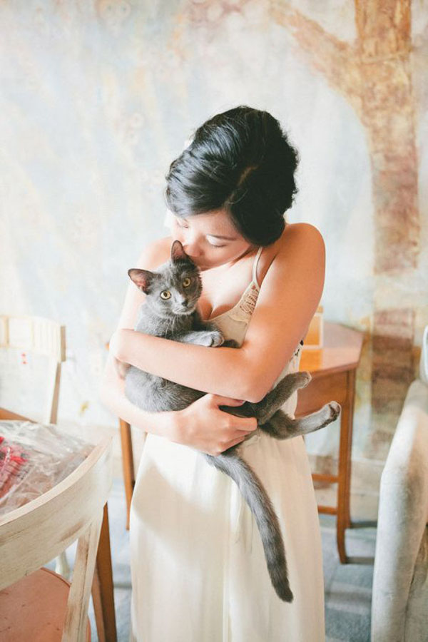 gatto con sposa - animali ai matrimoni