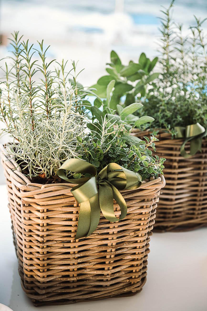allestimento matrimonio con piante aromatiche