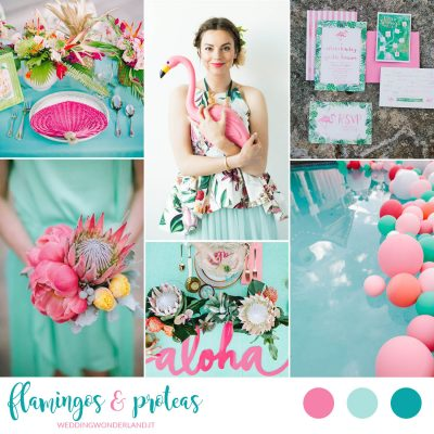 Inspiration board: Flamingos and Proteas