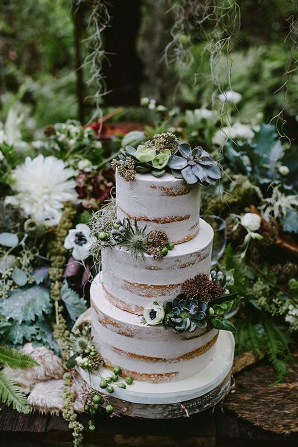 torta con piante succulente