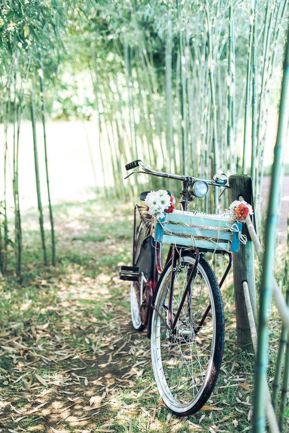 allestimento con bicicletta vintage