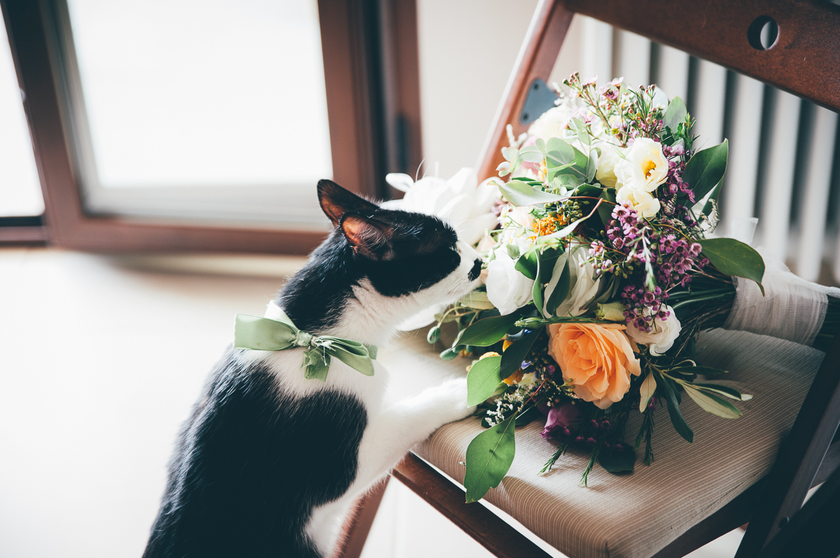 bouquet country chic e gatto