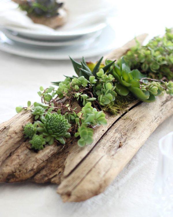 centrotavola fai da te con legno e piante succulente