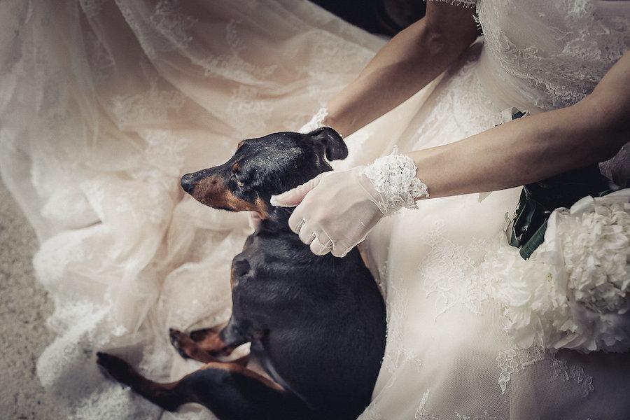 sposa con cane