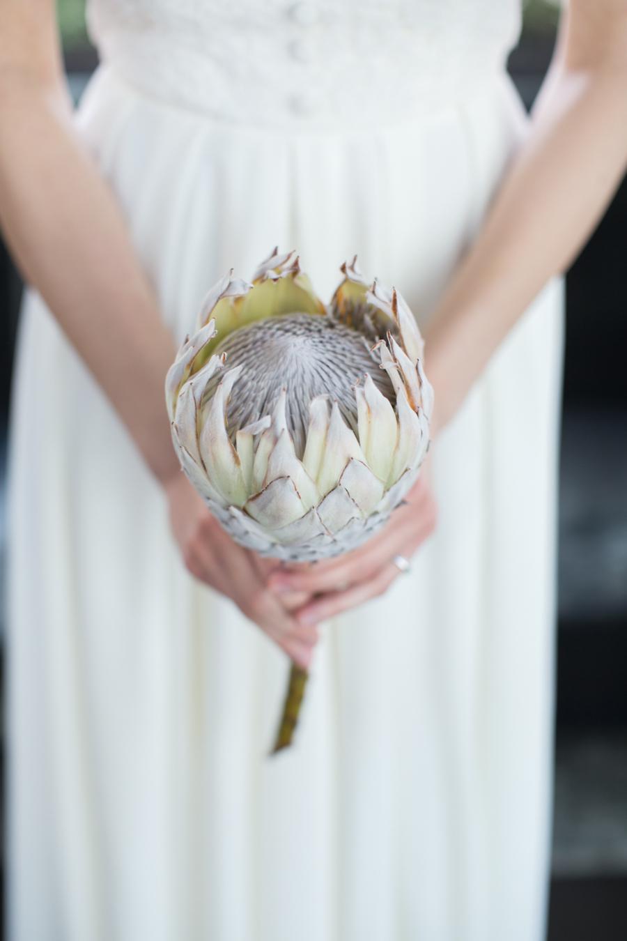 sposa con protea