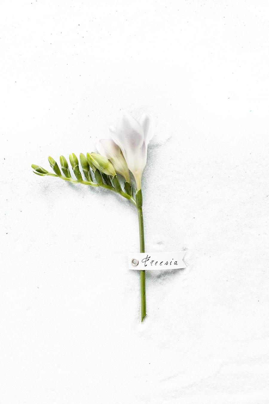idee-matrimonio-in-inverno-14