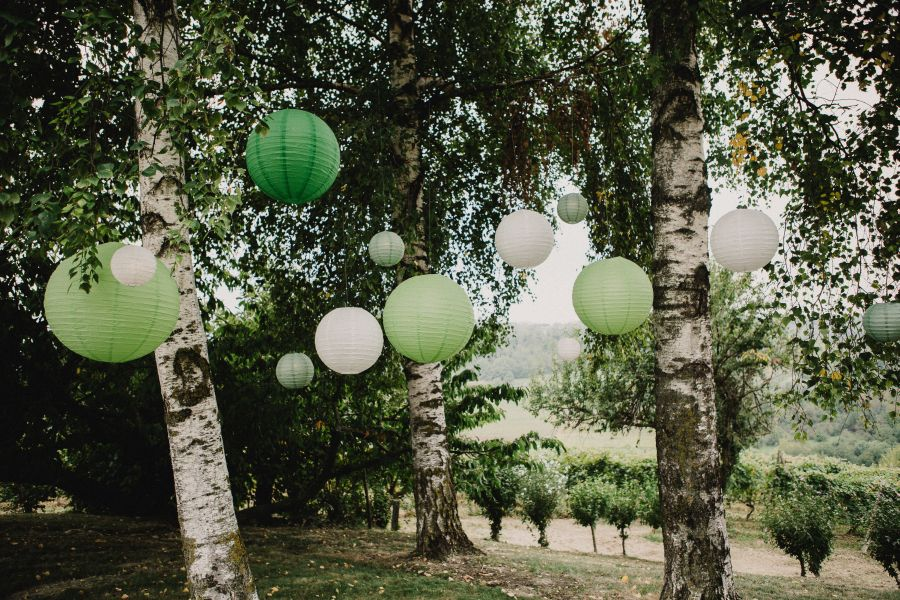 Matrimonio In Vigna Piemonte : Un matrimonio botanico in vigna wedding wonderland