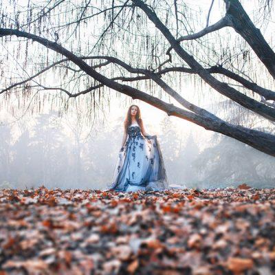 Ispirazione fiabesca e invernale nel bosco