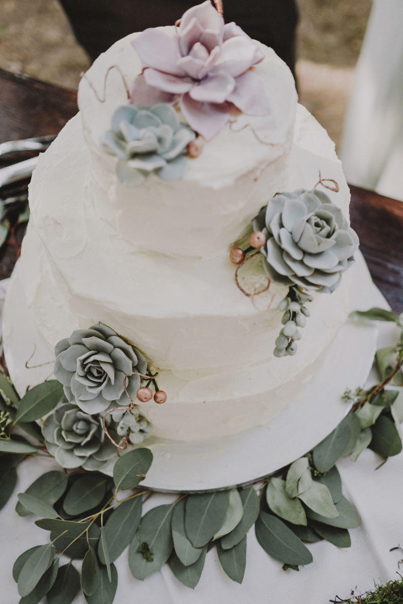 wedding cake con piante succulente
