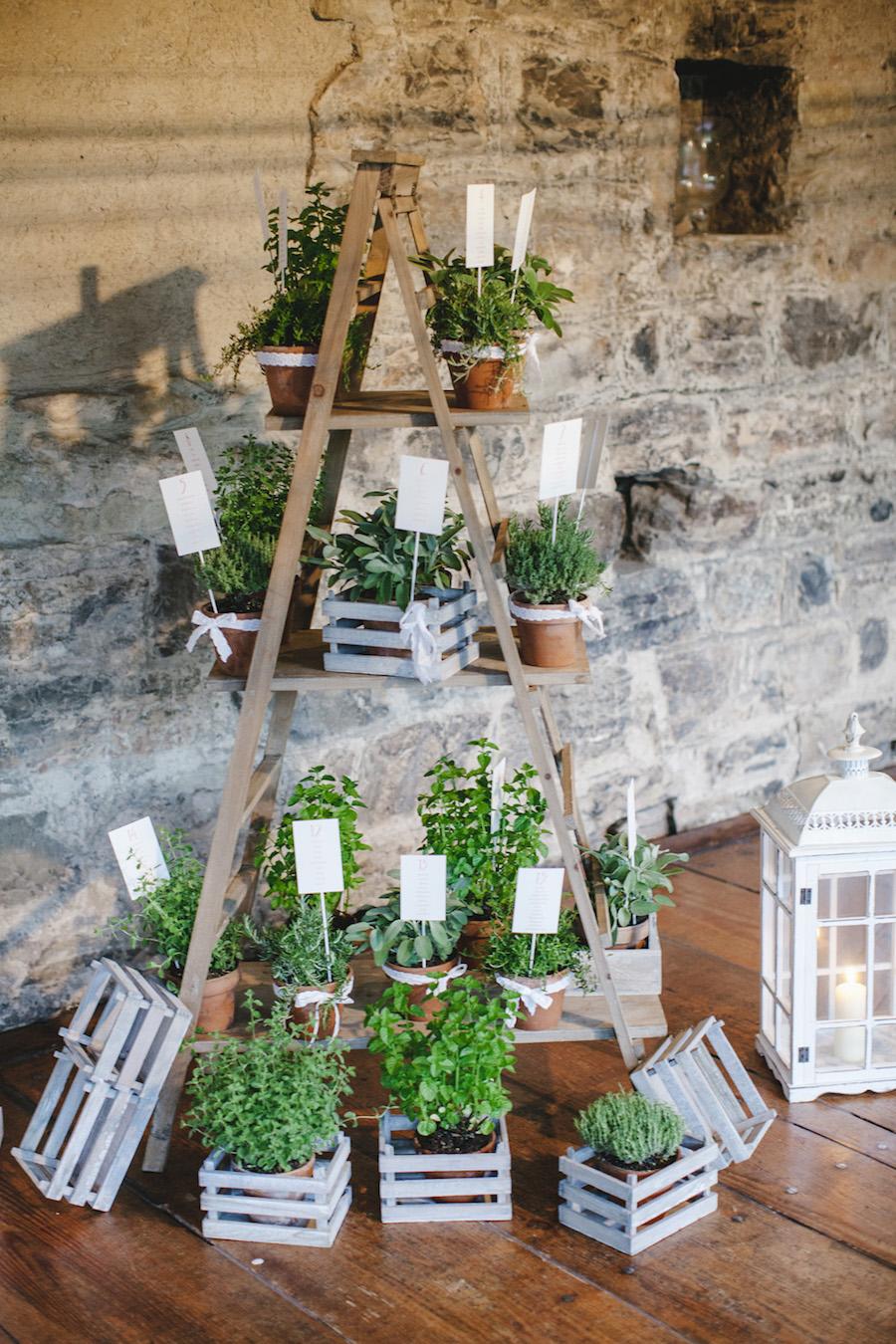 tableau de mariage con scala vintage ed erbe aromatiche