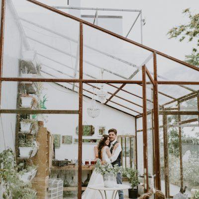 Rosa antico e foglie d'ulivo per un matrimonio rustico