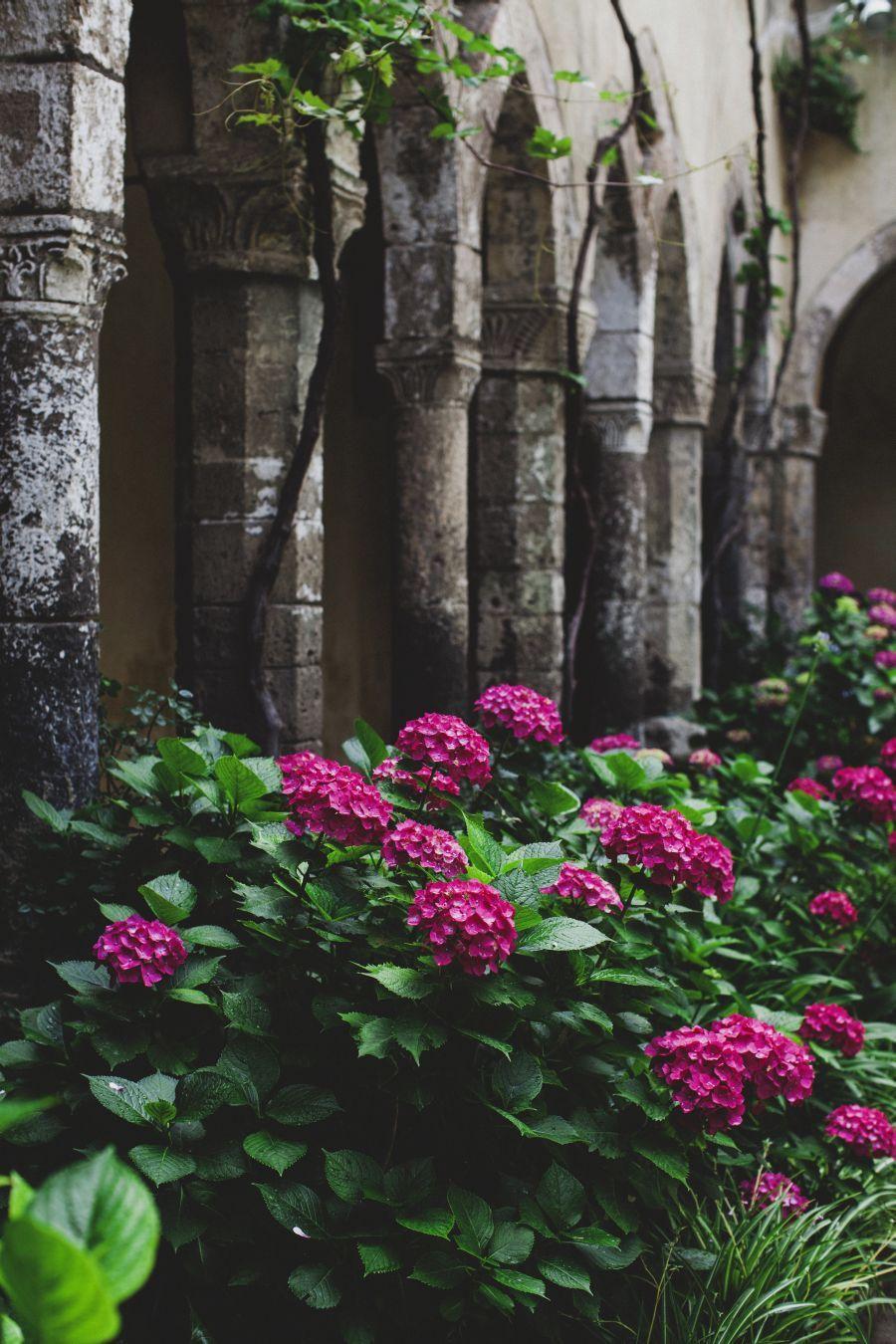 Matrimonio Tema Botanico : Un matrimonio botanico a sorrento wedding wonderland