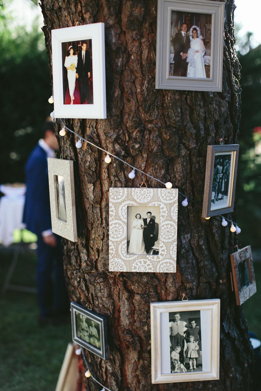 albero delle foto matrimonio
