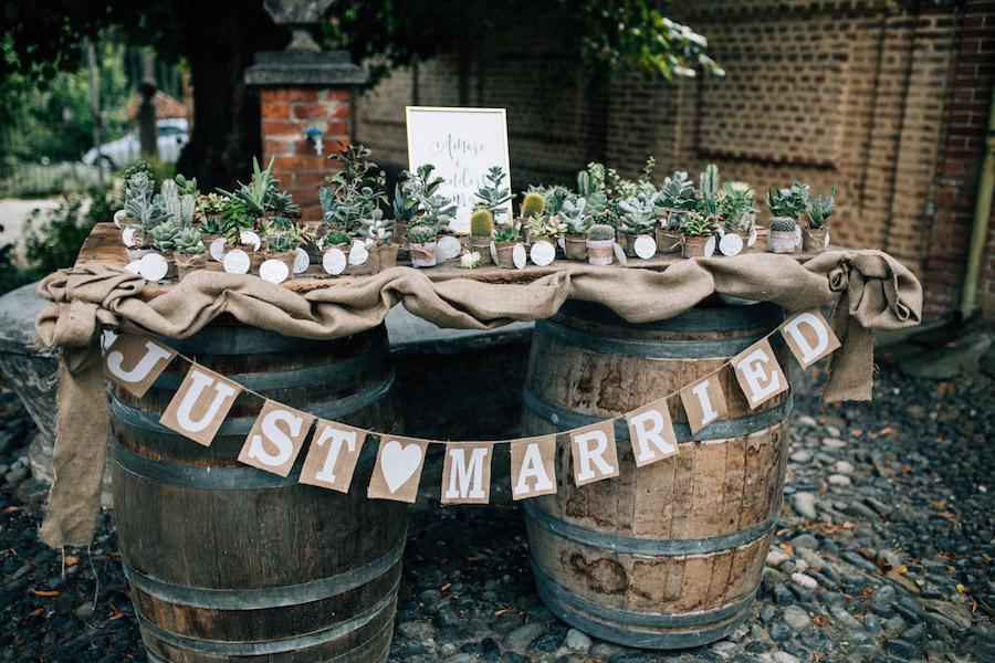 piante succulente come bomboniere