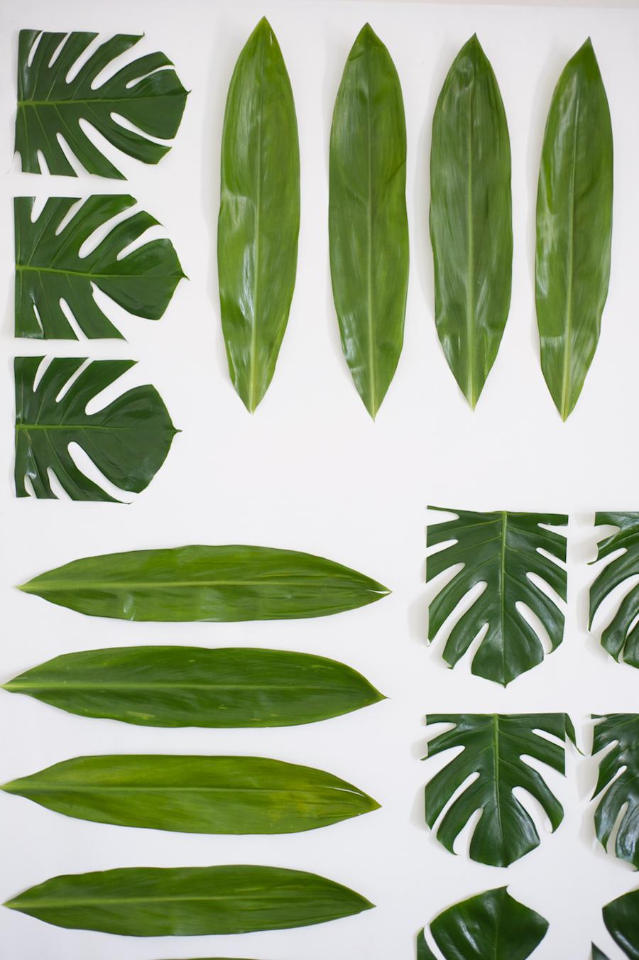 backdrop matrimonio con foglie tropicali